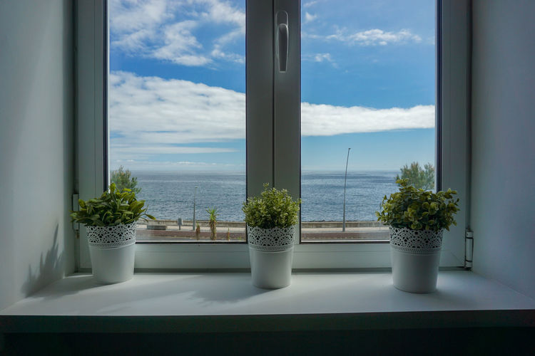 Potted plants on window sill against sky