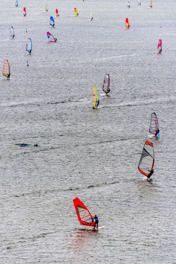 The colorful windsurf sails create a contrast with the silver gray water of the North Sea. Fun Holiday Netherlands Noth Sea Surf Surfer Colorful Gray Leisure Activity Men Outdoors People Real People Sails Sea Sea And Sky Silver  Sport Summer Surfers Surfing Water
