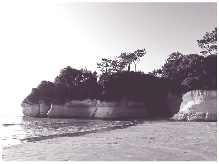 Cliff Cliffs And Beach Trees Pines Water Vintage Style Pitoresque Vintage Edit  Framed In Suzac Charente-Maritime France