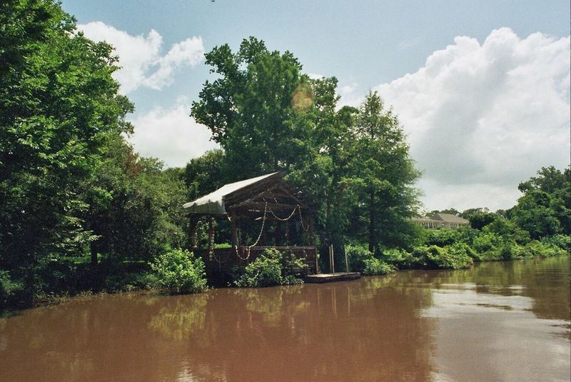 Hidden Gems  Lafayette Lafayette La Bayou Swamp Cajun Argentique Analogue Photography Film Film Photography Filmisnotdead Ishootfilm