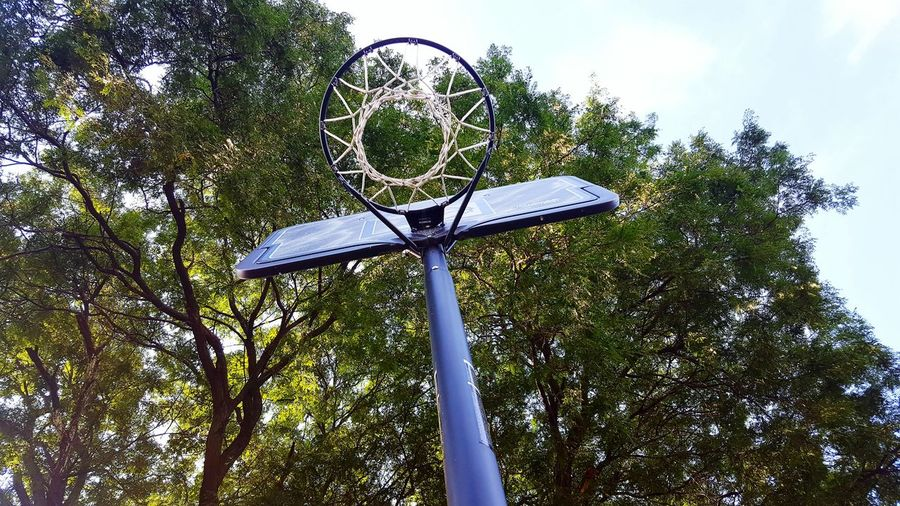 Take shots. Take risks. Low Angle View Pole Directly Below Tall Basketball Basketball Hoop Basketball Game Basket Ball Hoop Hoops Hoopin Allnet Sports Sports Photography NBA Play Basketball Play Ball Sky Clouds Tree Color Of Sports The Color Of Sport