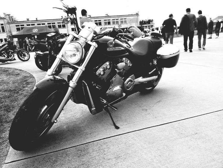 Harley Davidson Motorcycles Relaxing Traveling