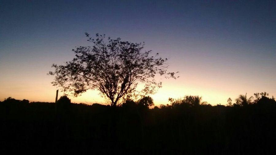 Sol nascendo no sertão nordestino, Bom Sucesso - Morada Nova-CE!! Solnascendo
