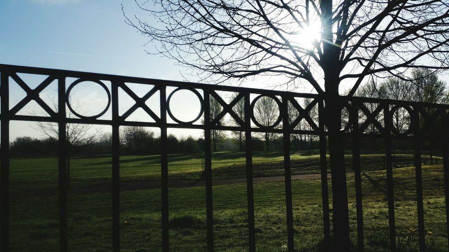 Preston, Lancashire Fishwick Bottoms Outdoors Nature No People Peace Tree Sun Grass Fence