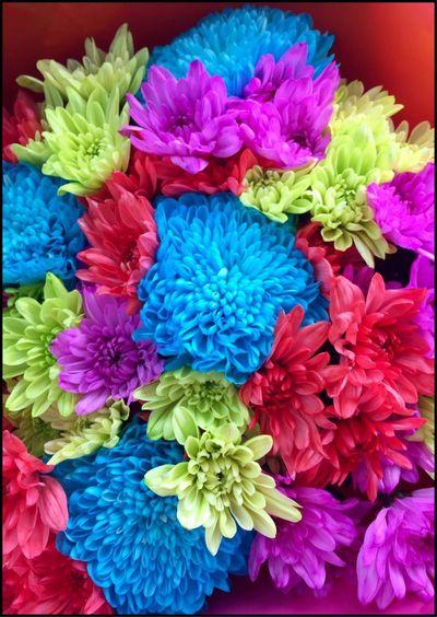 Beautiful bunch of Flower's 💐💐💐 Bouquet Bouquet Of Flowers Flowers Flower Collection Flowers Of EyeEm Rainbowflowers Flower Photography Floweroftheday Flowermagic Scent Of A Flower Beautiful Flowers 💐💐💐