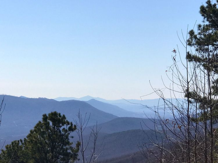 Endless views Mountain Nature Clear Sky Mountain Range Vegetation No People Tree Beauty In Nature Landscape Outdoors Sky Day Range EyeEmNewHere The Great Outdoors - 2017 EyeEm Awards Freshness Beauty In Nature Mountains And Sky Virginia Mountain_collection Nature Photography Mountainscape Travel Photography Blue Ridge Mountains Blueridgemountains The Great Outdoors - 2017 EyeEm Awards