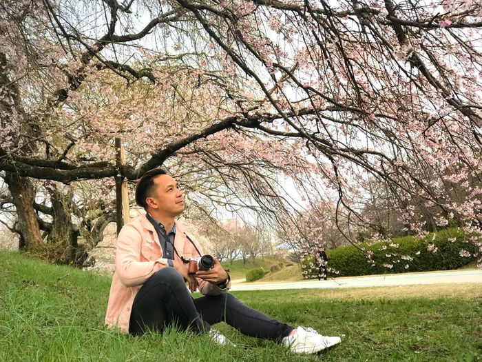 Young woman sitting on cherry blossom