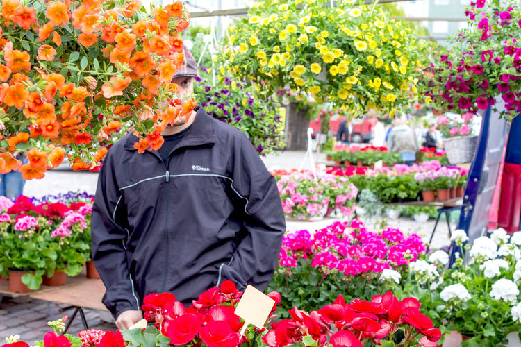 View of man in flower market
