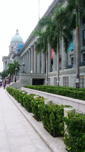 National Asian Art Gallery, Singapore Beautiful Day Photography Singapore BeautifulInfrastructure Structuralphotography Gallery Of Art Singaporegallery Asian Culture Beautiful Architectural Detail