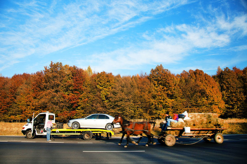 People on road against sky during autumn