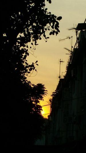 Sunset ♡♡
