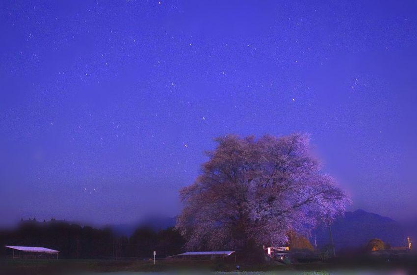 Nightphotography Night Stars Star Under The Milky Way