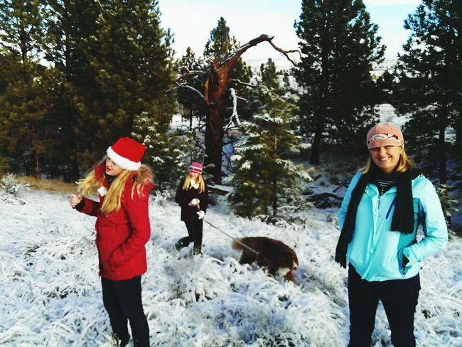 Christmas day walk in the woods.