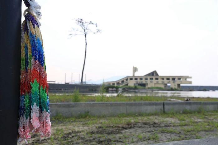 Remember 311 Be prepared... The Great East Japan Earthquake 3.11 Memorial Japan 3.11 ~カメログまたここで~ Prayforjapan