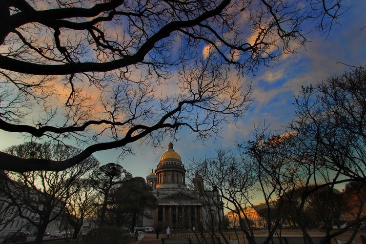 Evening in St Petersburg Showcase March Full Frame Wide Angle Evening Sky Evening City Russia Saint Petersburg Cathedral Urban Trees City Trees City Sky And Trees Looking Up Curves