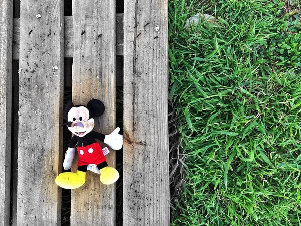 Mickey Mouse Toys Iphone5s Eyem Gallery Eye4photography  Eyem Best Shots Iphonesia