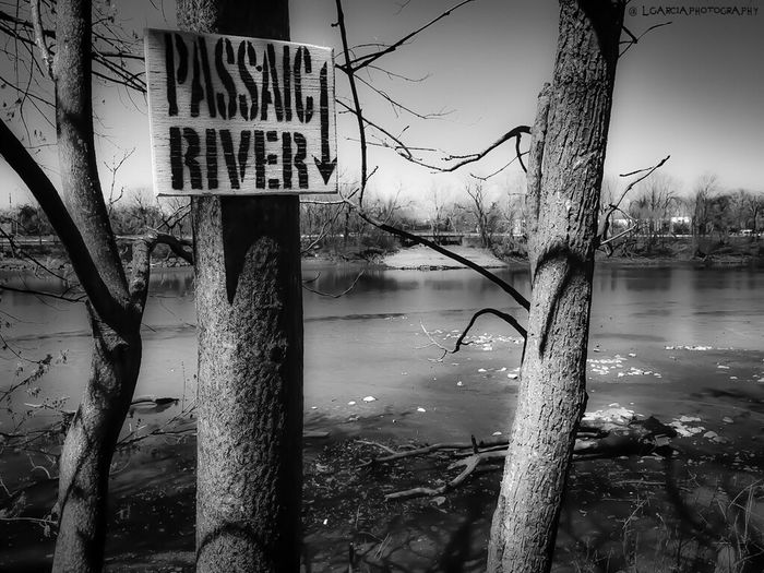 Passaic river..... LGarciaPhotography Lyndhurst New Jersey Jersey Nj New Jersey Passaic  River Monochrome Taking Photos Landscape Dark Enjoying Life Light Shadow Light And Shadow Bnw_friday_eyeemchallenge Bnw Nature Photography Nature Street Photography Streetphotography Monochromatic Black And White Urban Blackandwhite