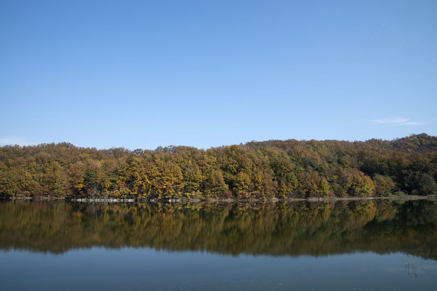 autumn landscape of Busodamak, a beautiful lake located in Okcheon, Chungbuk, South Korea Autumn Autumn Colors Busodamak Fall Beauty Morning Light Okcheon Beauty In Nature Blue Clear Sky Day Lake Lake In Autumn Lake In The Morning Landscape Nature No People Outdoors Reflection Scenics Sky Tranquil Scene Tranquility Tree Water Waterfront