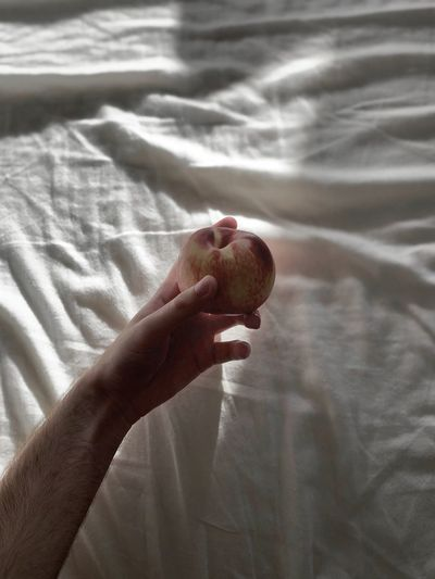 Close-up of hand holding fruit on bed