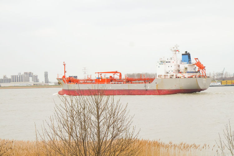 Doel, Antwerp, Belgium – February 2019: Large cargo ship leaving the Antwerp harbor heading for the open sea Water Sky Architecture Nautical Vessel Ship Nature Built Structure Transportation Building Exterior Sea Mode Of Transportation Day Freight Transportation No People Land Shipping  Beach Outdoors Business