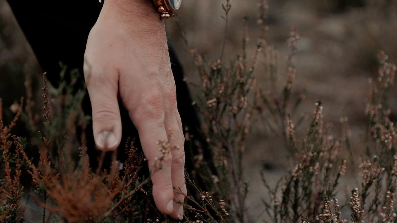 MIDSECTION OF PERSON HOLDING HANDS AMIDST PLANTS ON FIELD