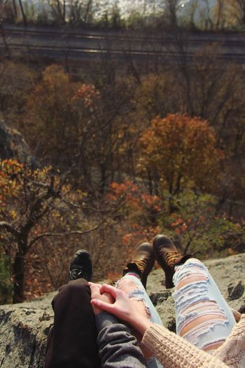 Autumn Real People Togetherness Leisure Activity Two People Human Leg Lifestyles Human Body Part Bonding Day Women Tree Sitting Friendship Love Nature Men Forest Couple - Relationship Outdoors