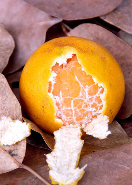 Orange fruit sweet and sour are on foliage in Thailand. Delicious Thailand Foliage Fruit Fruit Freshness Fresh Autumn Healthy Health Fruit Orange Orange Tree Crust Healthcare Happiness Holiday Relax Wood Tree Food And Drink Fruit Healthy Eating Freshness No People Wood - Material Close-up Food Citrus Fruit Studio Shot Indoors  Day
