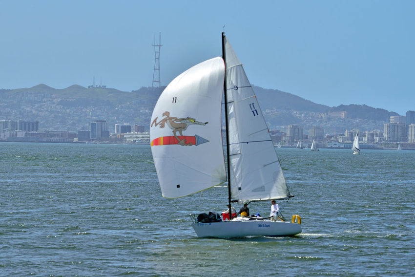 Sailing Middle Harbor 15 Port Of Oakland,Ca. Middle Harbor Waterfront♥ Cityscape Sailboats Sailing San Francisco Bay Sutro Tower Hills Of San Francisco Urban Landscape Open Sails People On Board A Day On The Bay Wake - Water Mast Office Buildings Landscape_Collection Landscape_photography Calm Water Communication Towers Sailing Boat Yacht Regatta Harbor
