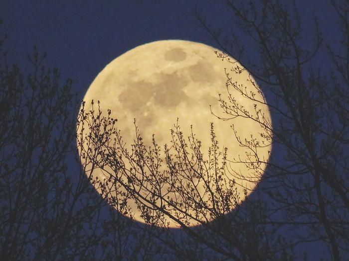 the moon waking