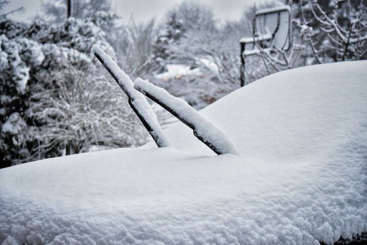 My car Snow Winter Cold Temperature White Color No People Nature Outdoors Day Close-up Beauty In Nature Snowing Snow Covered Snow ❄ Windshield Windshield Wipers Car Winter Weather Covered Driveway Covering Front Yard Cold Nature