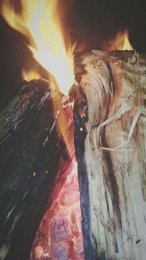 Fire. Hot