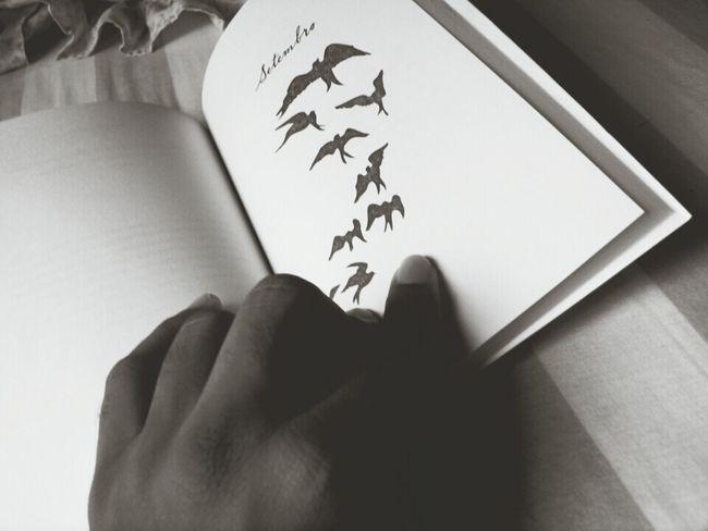 Setembro Stayingstrong DemiLovato