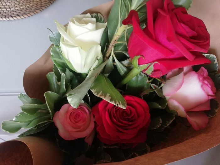 5 roses for my