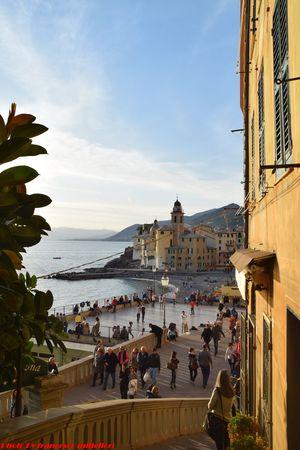 The Sea City Day Tranquil Scene Beauty In Nature Sea Life Promenade De La Mer