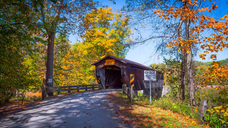 Footbridge Amidst Trees Against Sky During Autumn