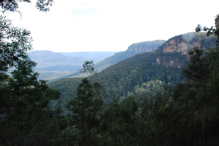Photos of Blue Mountains National Park, Australia 2012 Beauty In Nature Day Growth Idyllic Landscape Mountain Mountain Range Nature Non-urban Scene Outdoors Real People Scenics Sky Tranquil Scene Tranquility Tree