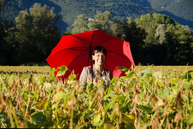 Business Woman Standing in a Agriculture Field with Her Red Umbrella. Agriculture Business Suit Adult Bean Businesswoman Day Field Filed Front View Growth Holding Land Leisure Activity Lifestyles Nature One Person Outdoors Plant Protection Real People Security Selective Focus Standing Umbrella