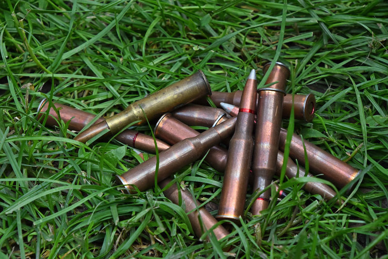 Heap of assorted 7.62 Bullets left in green grass 7.62 Abandoned Ammo Ammunition Bullet Bullets Caliber Close-up Field Grass Grassy Group Heap Lead Left Lost No People Old Rounds Several