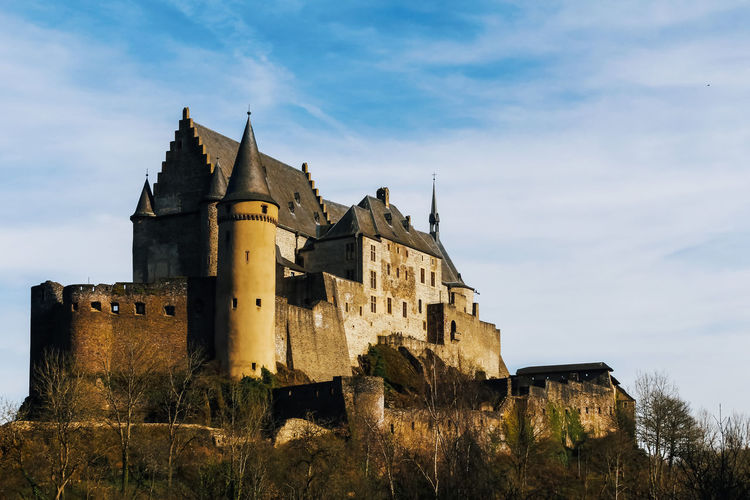Architecture Built Structure History Sky Building The Past Building Exterior Castle Old Nature Low Angle View Plant Cloud - Sky Medieval Fort Travel Destinations Outdoors Day Ancient Tree No People Gothic Style Vianden Palace Castle Fairytale  Luxembourg