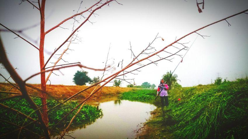 Nature_collection At Alor Setar Malaysia Fishing At River Of Mada Naturelandscape