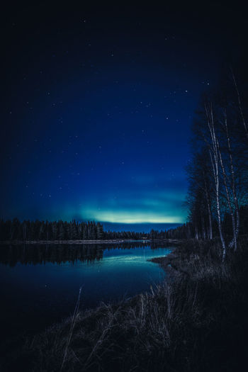 Riverside Night Sky Scenics - Nature Star - Space Water Astronomy Beauty In Nature Tree Tranquility Nature Tranquil Scene No People Illuminated Outdoors Dark Lapland Finland Northern Lights Aurora Borealis Moonlight River Landscape Blue Nightphotography Landscape_Collection