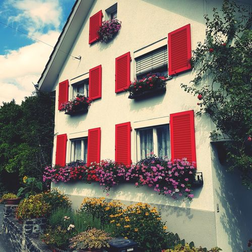 Red House Building Exterior Window Architecture Day Outdoors No People Built Structure Flower Sky Nature Freshness EyeEm Gallery Switzerland Grand Tour Of Switzerland Alps Colors Color Explosion Traditional Traveling Who Lives In The House? Garden Photography Flowers EyeEm Best Shots