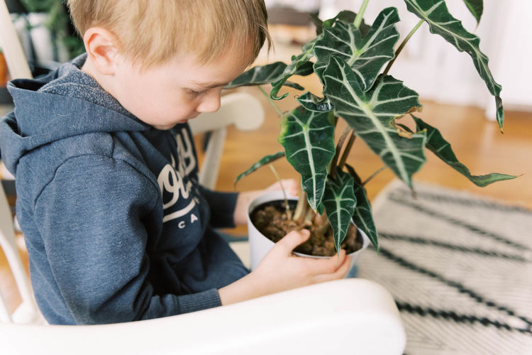 Midsection of boy holding plant