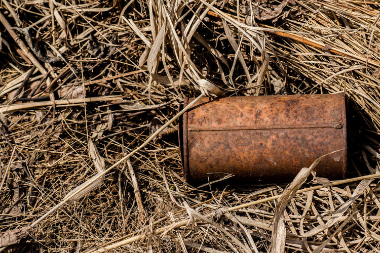 Artsy Artsy Fartsy Eaten Away From Rust Garbage Grass Holes Old Rust Rusted Rusted Can Rusted Metal  Rustic Rusty Rusty Things Rustygoodness Shadows Simplicity Sunny Textured  The Week On EyeEm Thrown Away Tin Tin Can Tin Cans Weathered