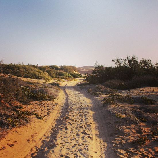 Roadtonature Roadtotheescape Escape Tothedunes dune ig_shotz instapic picoftheday galaxys5 natureshotz nature namibia swakopmund path followtheroad although not a yellow brick road but still gives you all the magic in the world