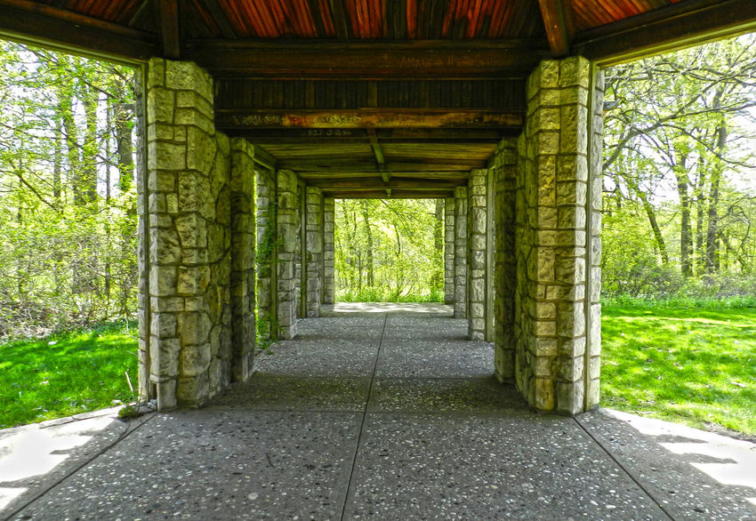 Patio Walkway Absence Architectural Column Architecture Built Structure Column Day Diminishing Perspective Empty Grass Green Color Growth Henry Ford Estate Long Narrow Nature Pattern Patterns & Textures Plant Stone Work The Way Forward Tranquility Tree Vanishing Point Walkway Wooden Roof