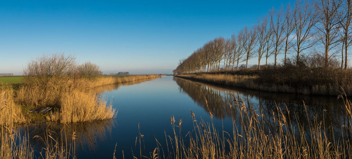 Pano of 2 pics; drainage channel Nummer Zevenweg, Biervliet Getty Images EyeEm Market © EyeEm Premium Collection Water Plant Tranquility Sky Landscape Clear Sky Tranquil Scene Reflections In The Water SONY A7ii Panorama Zeeuws Vlaanderen Zeeland  The Netherlands Drainage Channel