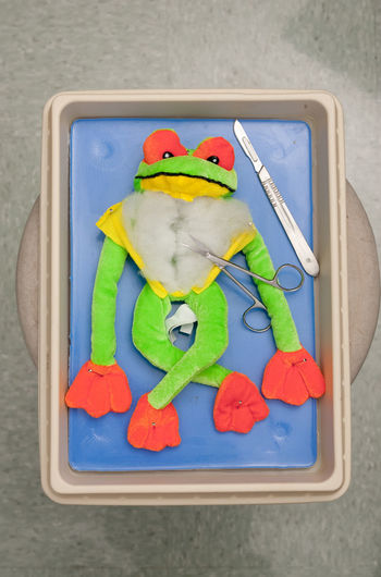 Directly Above Shot Of Scalpel And Scissors With Toy In Tray