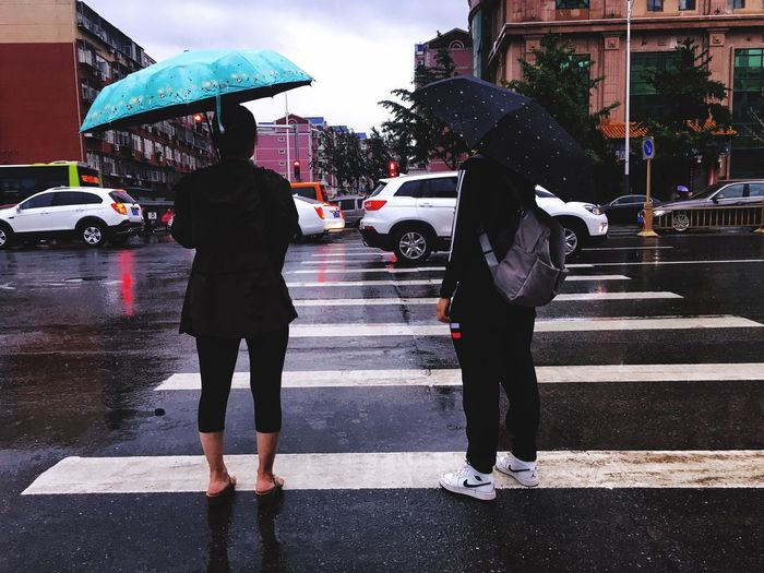 People in rain Umbrella City Rain Wet Protection Crossing Transportation Real People