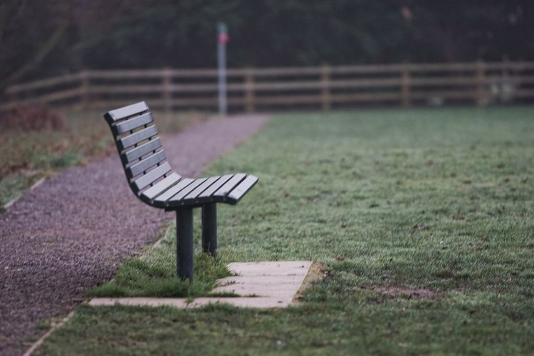 I wait. Dew Seat Relaxation Empty Absence Park - Man Made Space Bench Grass Close-up Park Bench Tranquil Scene Calm Countryside Scenics Tranquility